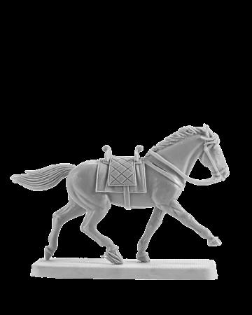 Horse #4